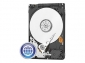 HD 1TB SATA 7200 WD CAVIAR BLUE (LPI 5,45 no inc)